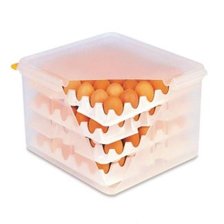 Egg transport box GN2/3 and 8 egg trays